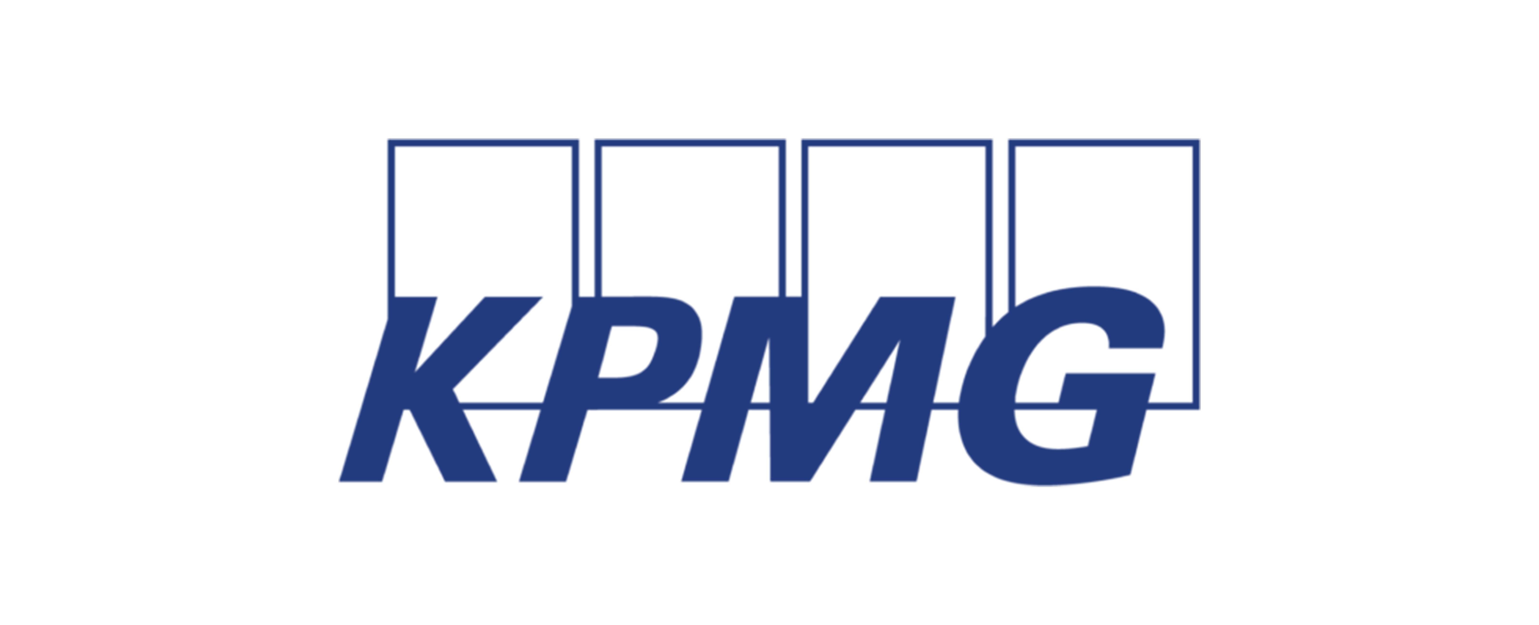 kpmg_partner